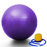 Yoga Gym Pilates Fit Anti Burst Swiss Ball With Pump 75cm Purple