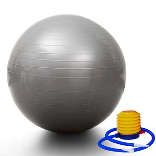 Silver Yoga Gym Fitness Pilates Fit Swiss Ball 75cm