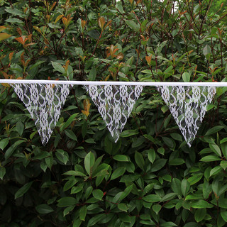 10m long 48 Flags Lace Vintage Banner Bunting Flag Wedding Party Decor